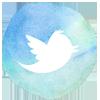 twitter-coaching